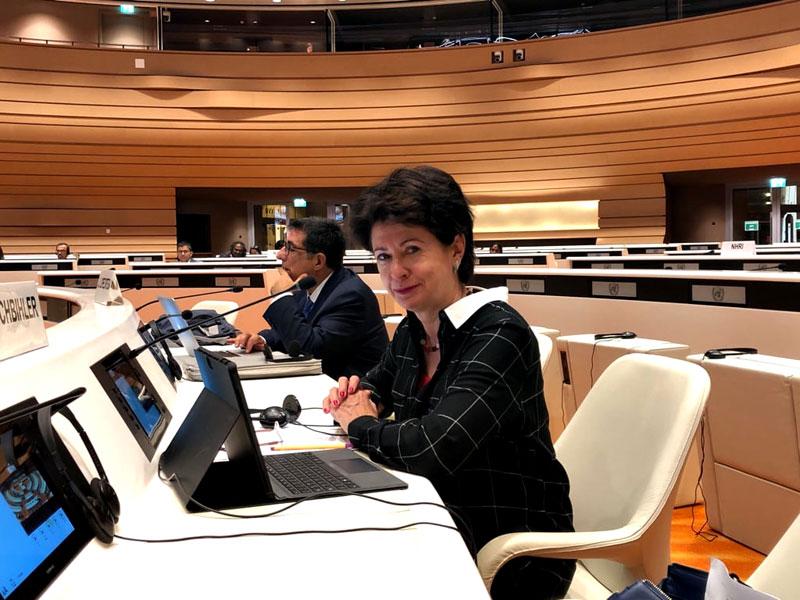 Foto: Barbara Lochbihler bei einem Treffen des UN Ausschusses gegen Verschwindenlassen